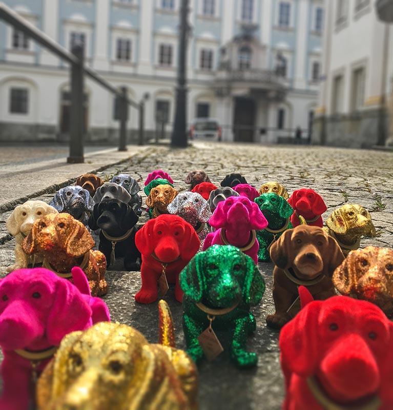 Pauli reist: Das Dackelmuseum in Passau