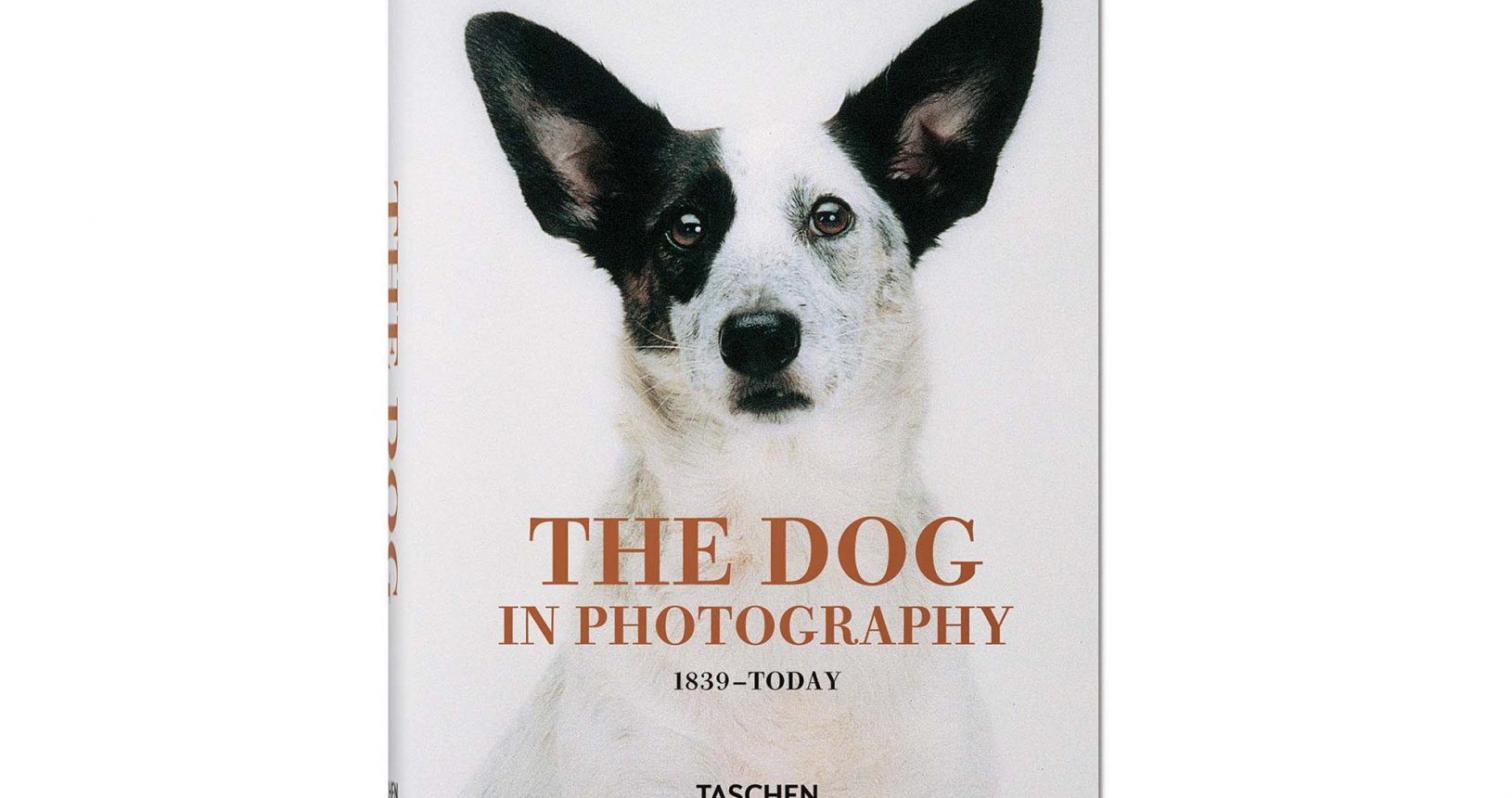 Raymond Merritt: The Dog in Photography, 1839 - today. © TASCHEN